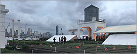 Green roofs must in new NYC buildings
