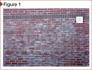 Efflorescence caused by cold, damp weather. Very severe efflorescence can make masonry appear as if being observed through a frosted glass. This wall was clear by late spring.