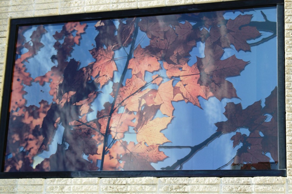 When combined with a low-emissivity (low-e) coating, digital printing can add an attractive and functional element to a façade. [CREDIT] Photo courtesy Brian R. Savage