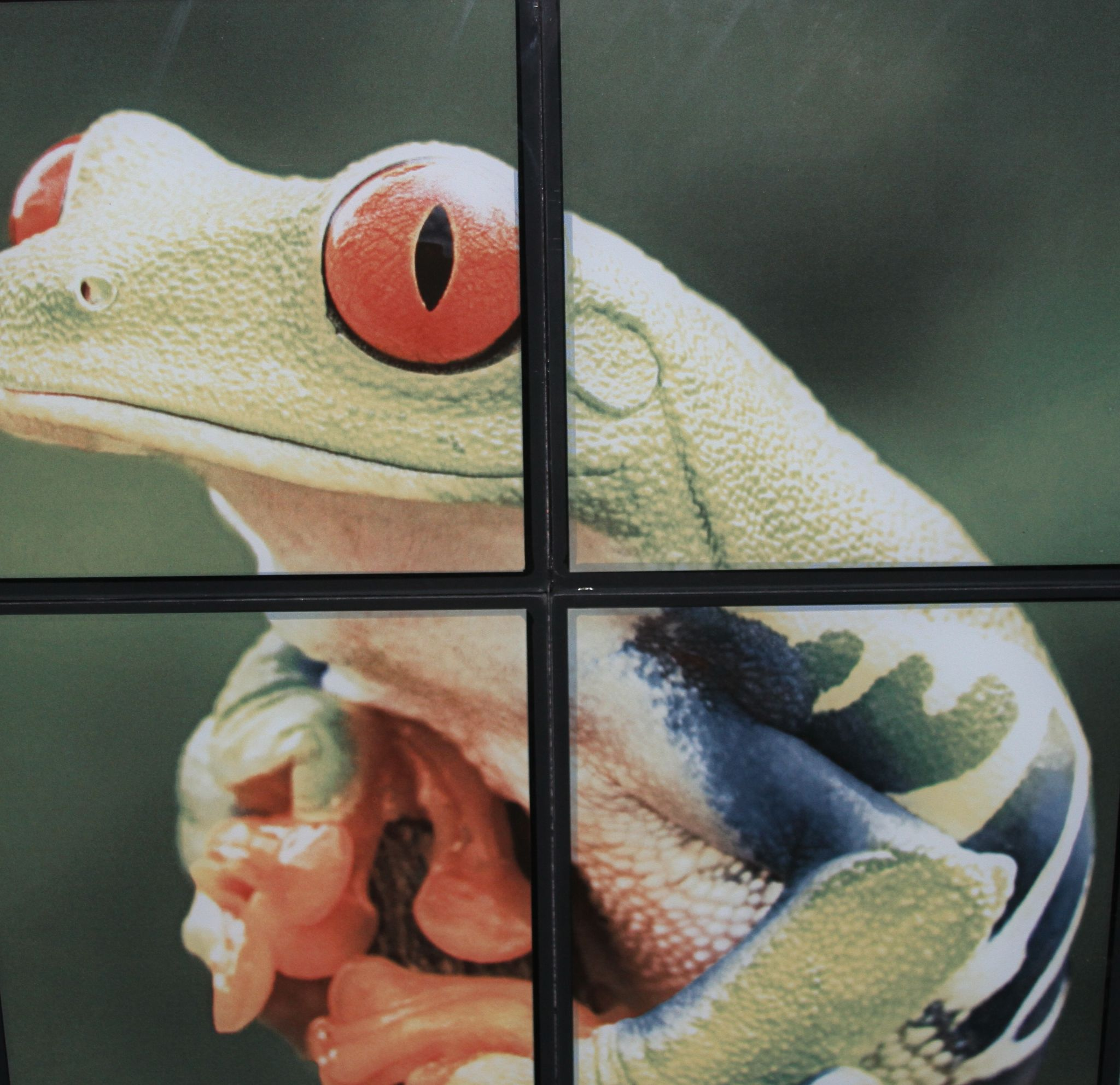 The Proprietary Software Adjusts Image To Correctly Print Across Multiple Lites Of Glass