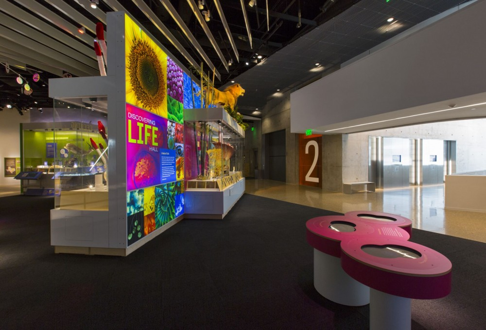 Perot Museum's Discovering Life Hall is a popular educational space. Under the Green Globes program, the facility achieved an overall rating of 85 percent. It had perfect scores for site design and enhancement measures to minimize the building's impact, as well as for its integrated design process, integration of environmental purchasing, commissioning plan, and emergency response plan.