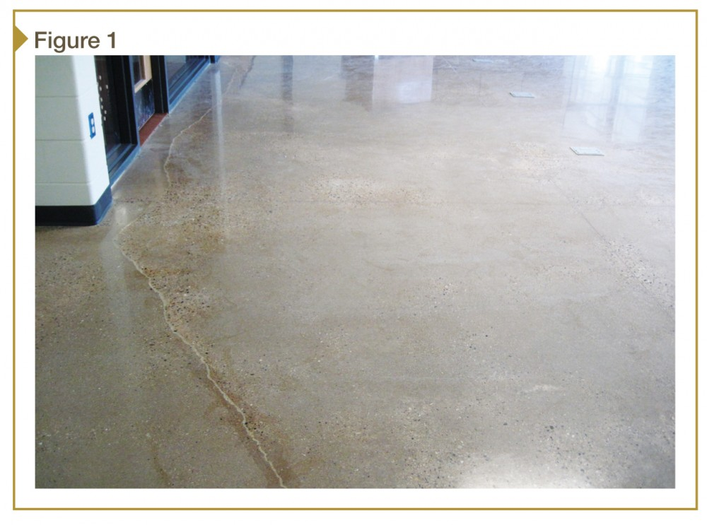 This polished concrete floor was designed with synthetic fiber reinforcement but without welded wire reinforcement (WWR). Photos courtesy Paul Pott