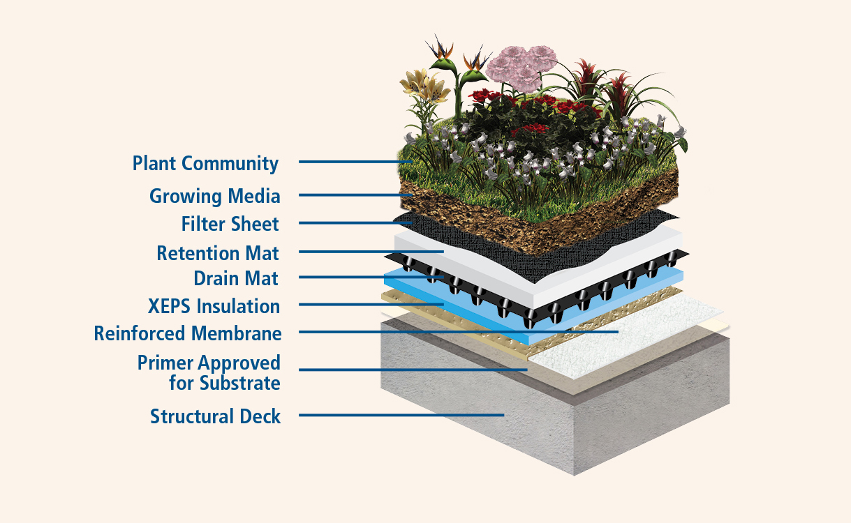 Built Up Roof Green Roof Assembly Construction Specifier
