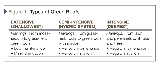 The three types of vegetated roofs, as per FLL.