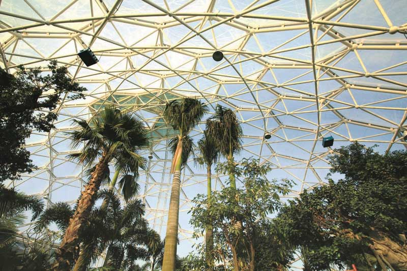 Quarry Shade Garden At Bon Air Park: Breaking The Glass Roof: Building With ETFE Architecture