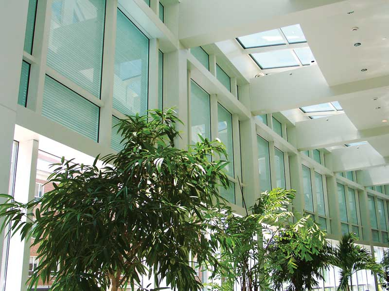 integrated-louvers-curtain-wall