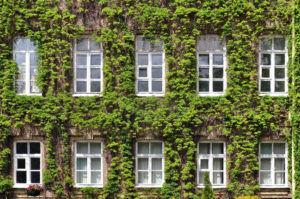 The U.S. General Services Administration's (GSA's) recognition of the Green Building Initiative's (GBI's) Green Globes certification will allow the certification to play an even more significant role in promotion of green building practices.  Photo © BigStockPhoto