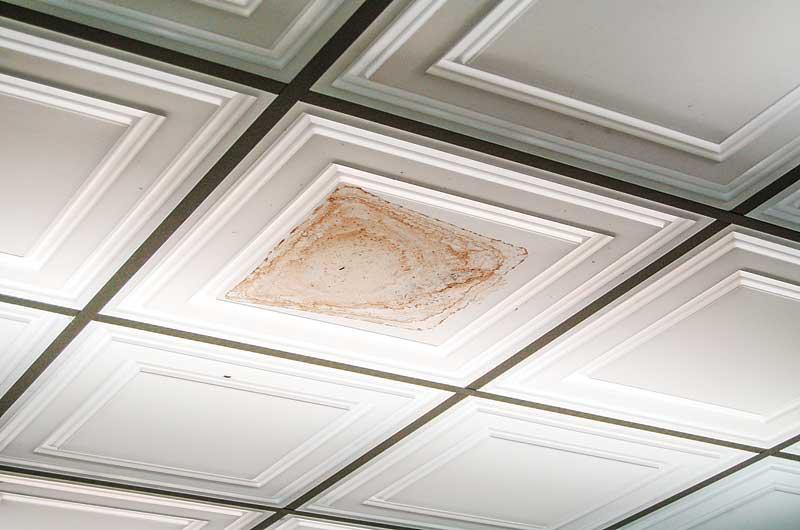 ceiling_dsc_0075