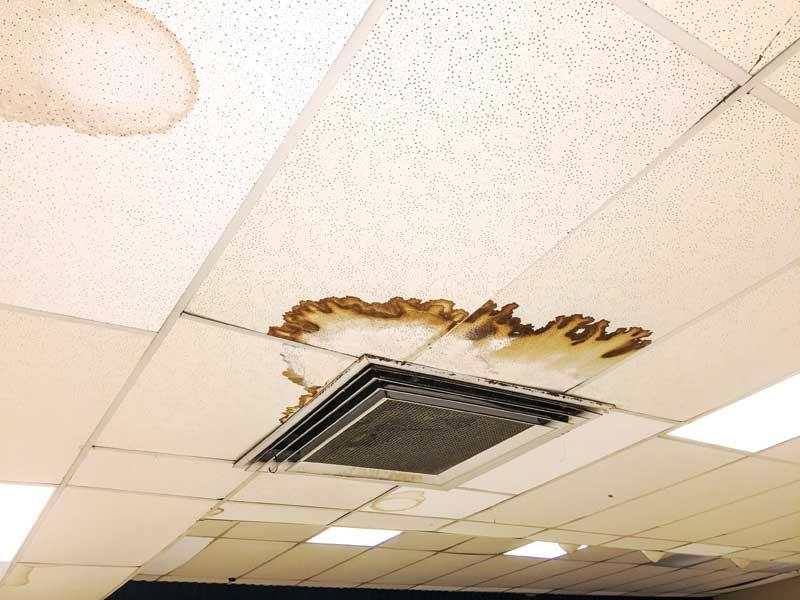 ceilings_img_1551