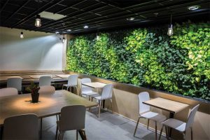 This living wall in a Portland cafe features alternating bands of dark and light green colors and makes the space feel more expansive, welcoming, and relaxing. Photo courtesy LiveWall and Acheff Images
