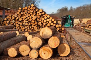 The U.S. Green Building Council (USGBC) has announced a new Timber Traceability Leadership in Energy and Environmental Design (LEED) pilot credit to increase transparency in timber supply chains and reduce the risk of illegally harvested wood entering the buildings industry. Photo © BigStockPhoto.com