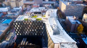 Bjarke Ingels Group's (BIG's) first residential building in Harlem, New York City, welcomes residents to the Smile. Image courtesy Thomas Loof and Pernille Loof