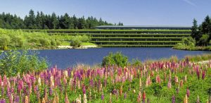 Landscape architects, architects, scholars, and others speak out about the threat to the Weyerhaeuser Corporate Headquarters in Washington. Photo courtesy The Cultural Landscape Foundation